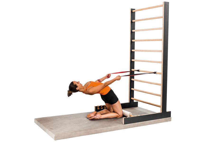 entrenamiento osteoporosis - D6 Pectoral Wunder Training