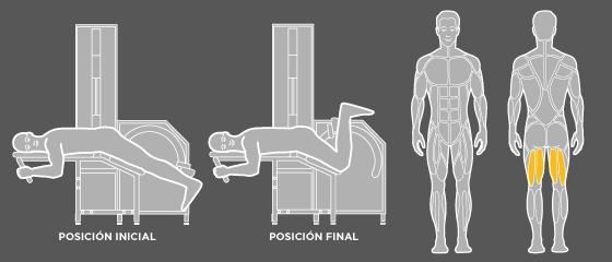 B5 Flexión de piernas Wunder Training
