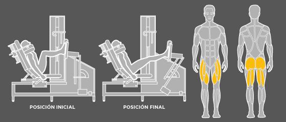 B6 Prensa de piernas Wunder Training