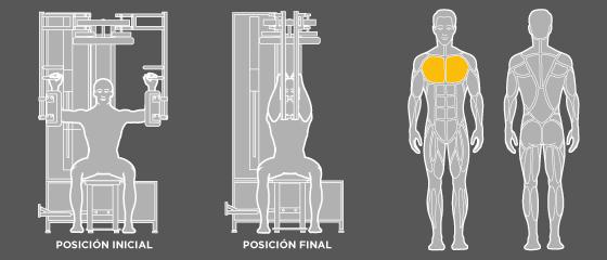 entrenament esquena - D5 Addicció de braços Wunder Training