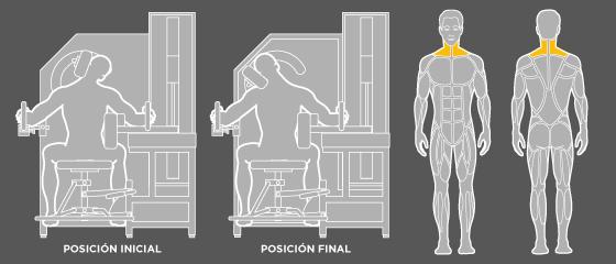 Ejercicios de espalda - G3 Flexión de cuello lateral Wunder Training