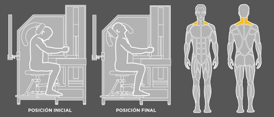 Ejercicios de espalda - G5 Extensión de Cuello Wunder Training
