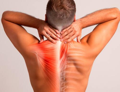 Com tenir una esquena sana i sense dolor?